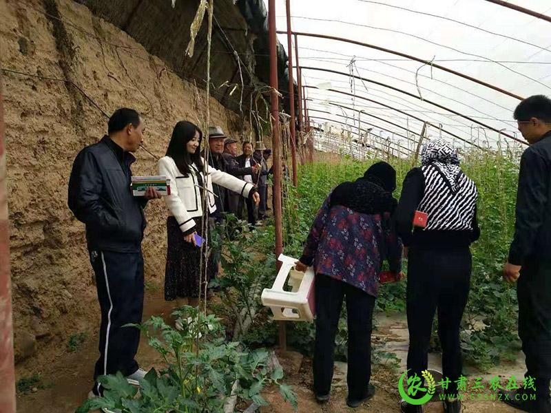 临夏市农机中心开展全市设施农业机械化技术现场演示培训会